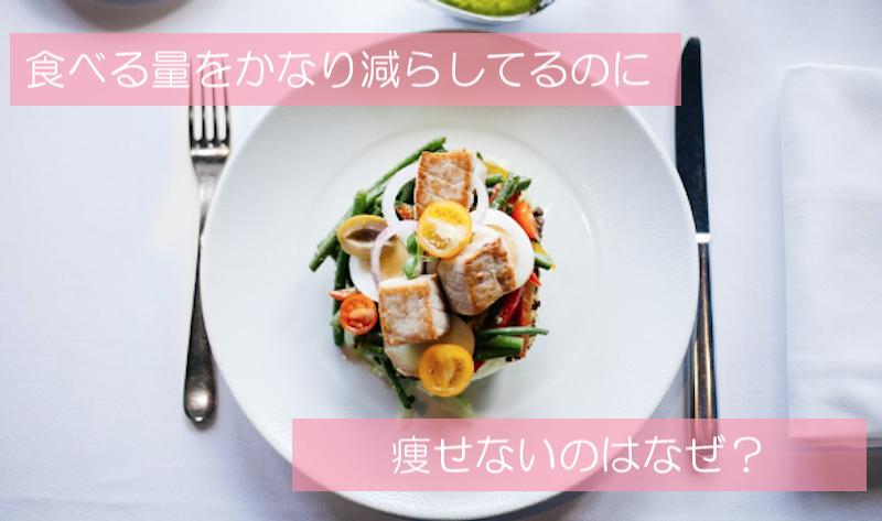 ダイエットに必要な食事の知識