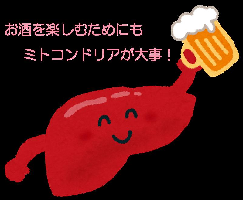 熊本のパーソナルジムが教えるお酒の楽しみ方。